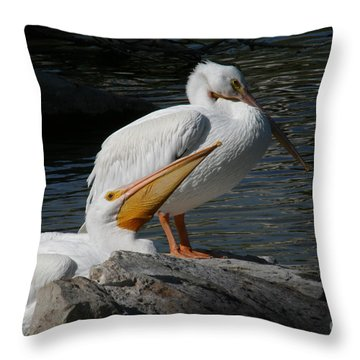 White Pelicans Throw Pillow by E B Schmidt
