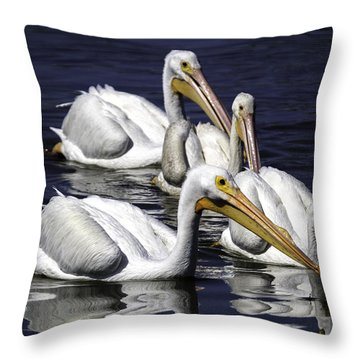 White Pelicans Fishing Throw Pillow