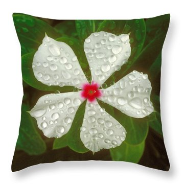 Throw Pillow featuring the photograph White Periwinkle by Mark Greenberg