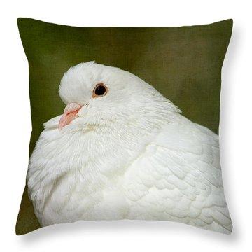 White Pigeon Throw Pillow