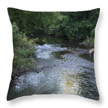 White Plains Stream Throw Pillow by John Telfer