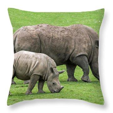 White Rhino 8 Throw Pillow