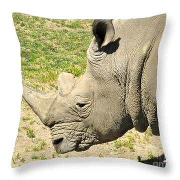 White Rhinoceros Portrait Throw Pillow by CML Brown