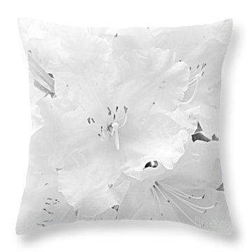 White  Rhoadie Throw Pillow