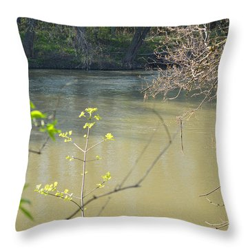 White River Throw Pillow by Alys Caviness-Gober
