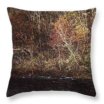 Throw Pillow featuring the photograph White River by Donna Smith