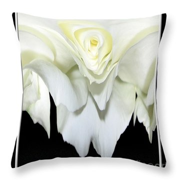White Rose Abstract Throw Pillow by Rose Santuci-Sofranko