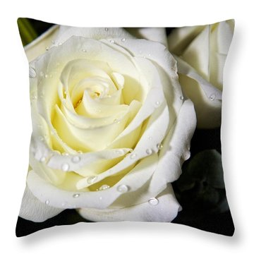 White Rose Throw Pillow by Dave Files