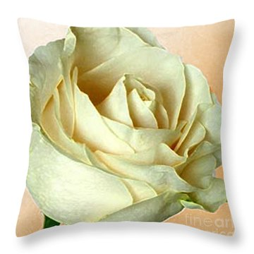 Throw Pillow featuring the photograph White Rose On Sepia by Nina Silver