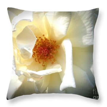 Throw Pillow featuring the photograph White Rose by Phil Mancuso