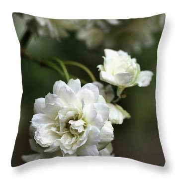 Throw Pillow featuring the photograph White Roses by Joy Watson