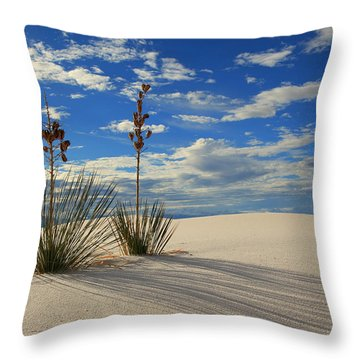 White Sands Afternoon 2 Throw Pillow by Alan Vance Ley
