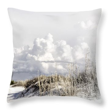 White Sands Winter Throw Pillow