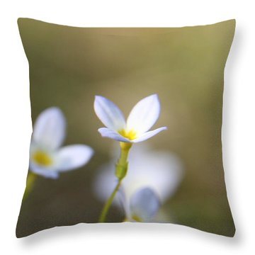 White Serenity Throw Pillow by Neal Eslinger