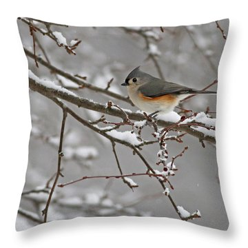 White Snow Titmouse Throw Pillow
