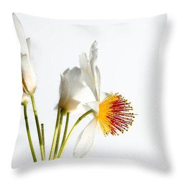 White Sparmannia Africana Plant. Throw Pillow