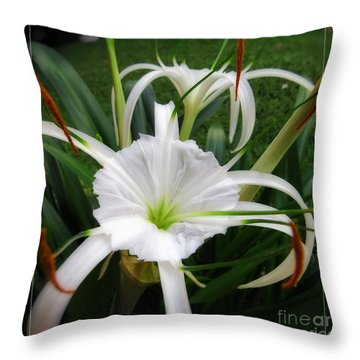 Hurricane Lily Photographs Throw Pillows