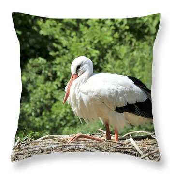 Throw Pillow featuring the photograph White Stork  by Teresa Zieba
