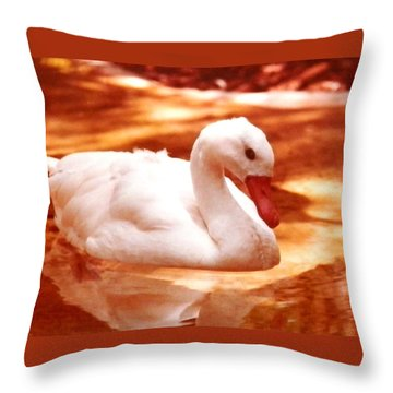 White Water Swan Beauty Throw Pillow by Belinda Lee
