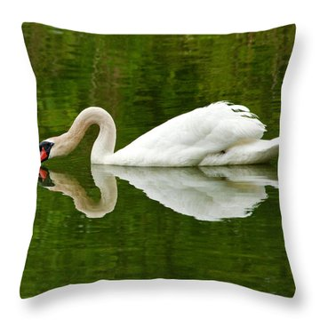 Throw Pillow featuring the photograph Graceful White Swan Heart  by Jerry Cowart