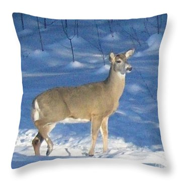 Throw Pillow featuring the photograph White Tail Deer by Brenda Brown