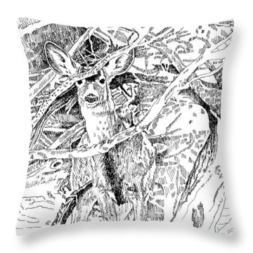 White-tail Encounter Throw Pillow