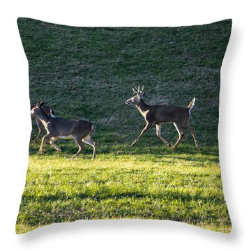 White Tailed Deer In Motion Throw Pillow
