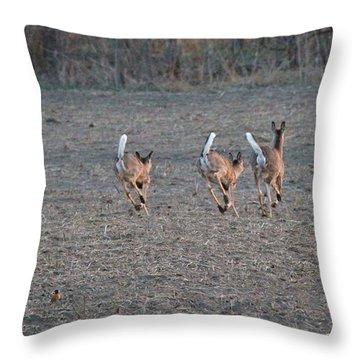 White Tailed Deer Running Throw Pillow