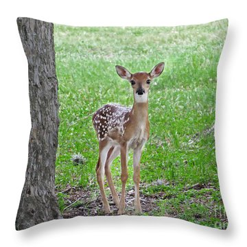 White-tailed Fawn - Face Of Innocence Throw Pillow