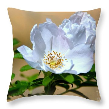 White Tea Rose Throw Pillow