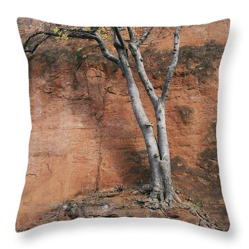 White Tree And Red Rock Face Throw Pillow