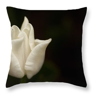 White Tulip Throw Pillow by Jacqui Boonstra