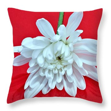 White Flower On Bright Red Background Throw Pillow