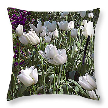 Throw Pillow featuring the photograph White Tulips And Violets In The Dallas Texas Arboretum by Merton Allen