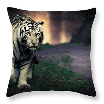 Zoos Throw Pillows