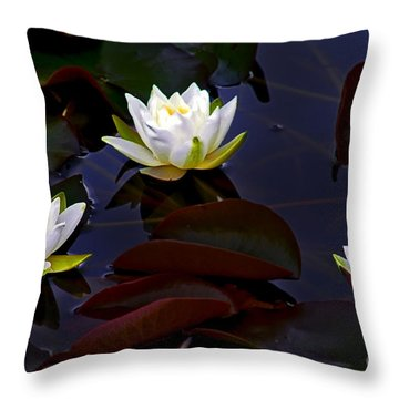 White Water Lilies Throw Pillow by Nina Ficur Feenan