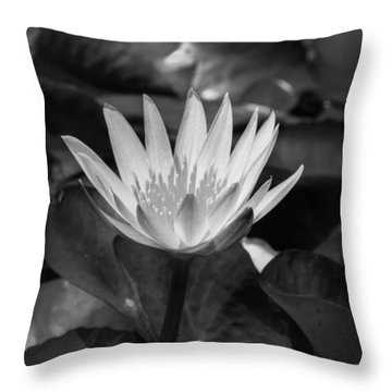 Throw Pillow featuring the photograph White Water Lily 001 Bw by Lance Vaughn