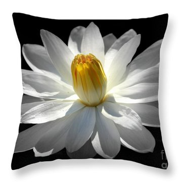 White Water Lily #2 Throw Pillow