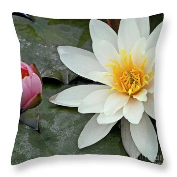 White Water Lily Nymphaea Throw Pillow by Heiko Koehrer-Wagner