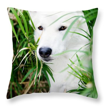 Throw Pillow featuring the photograph White Wolf by Erika Weber