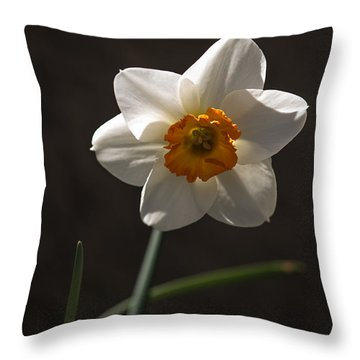 White Yellow Daffodil Throw Pillow