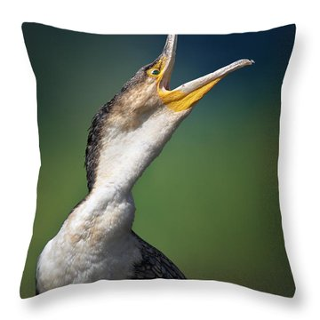 Whitebreasted Cormorant Throw Pillow