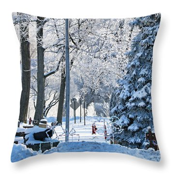 Whitehouse Village Park  7360 Throw Pillow