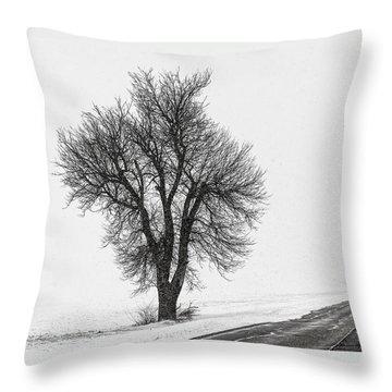 Whiteout Throw Pillow by Chris Austin