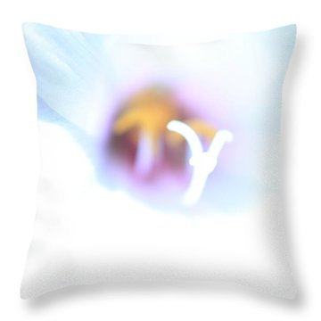 Throw Pillow featuring the photograph Whiteout by Greg Allore