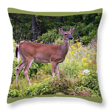 Whitetail Deer Throw Pillow