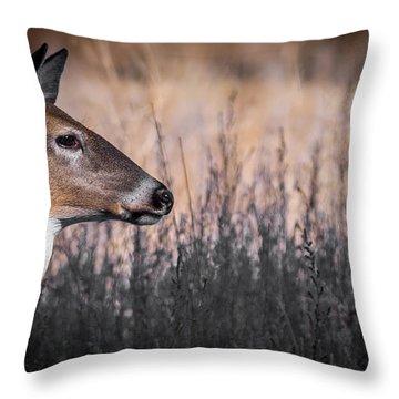 Whitetail Doe Keeping Watch 2 Throw Pillow