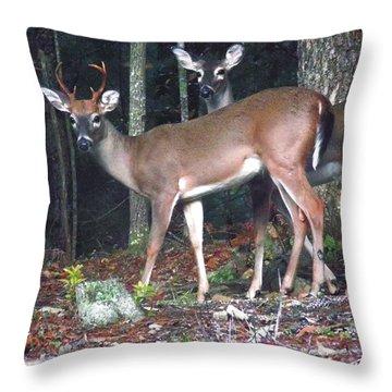 Whitetail Pair Throw Pillow