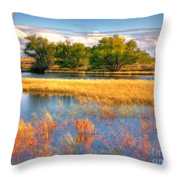 Whitewater Draw Throw Pillow