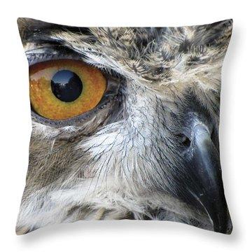 Who Throw Pillow